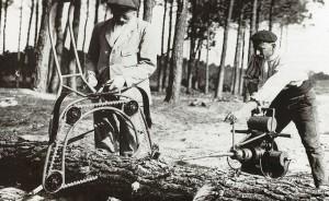 Gascogne Bois, entreprise spécialiste du pin Maritime, créée en 1925