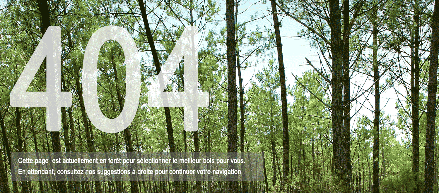Erreur 404-cette page est actuellement en forêt pour sélectionner le meilleur bois pour vous.